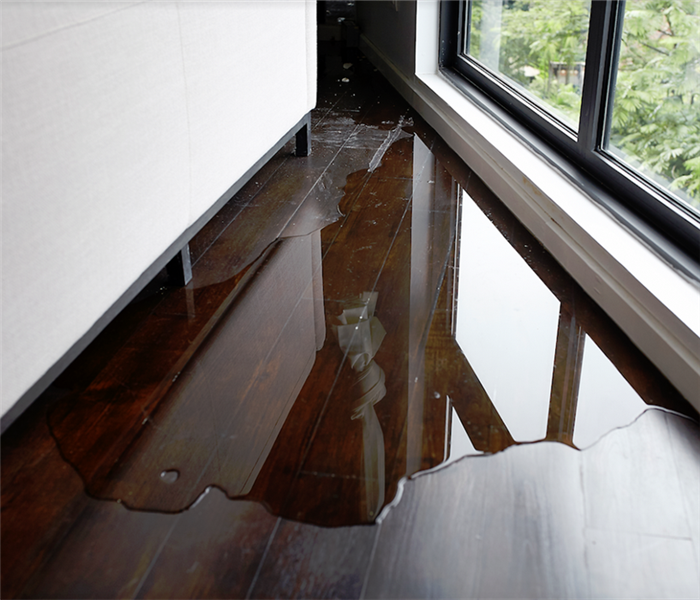 a puddle of water in the corner of a room