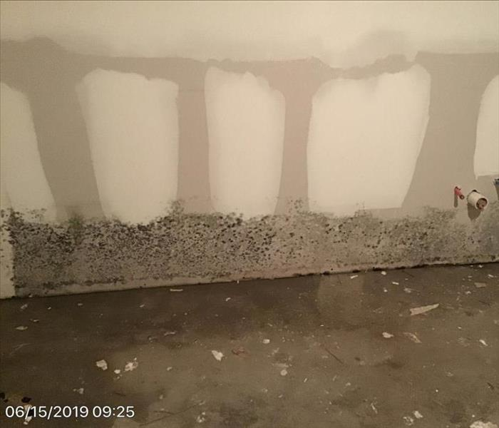 flooded floor, mold on baseboard area of wall
