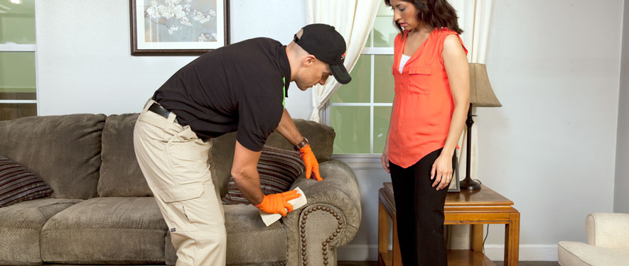 Nutley, NJ carpet upholstery cleaning