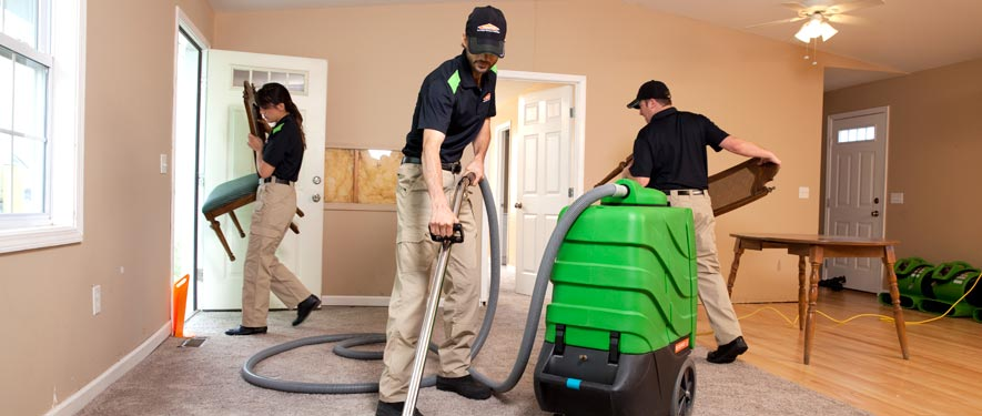 Nutley, NJ cleaning services